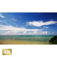 1027016 ■ 小浜島 小浜リゾート