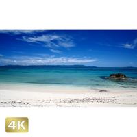 1026015 ■ 黒島 西の浜