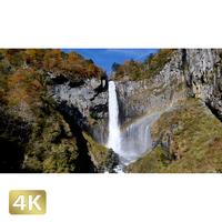 1014011 ■ 日光 紅葉 華厳の滝
