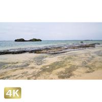 1023027 ■ 西表島 星砂の浜