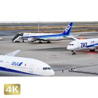 1028048 ■ 東京 羽田空港