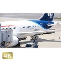 1031061 ■ 成田空港 第1ターミナル TAXING