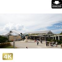 2042106 ■ 沖縄 ちゅらうみ水族館