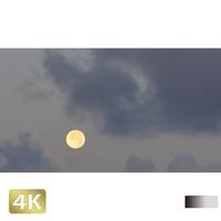 1026003 ■ 黒島 月
