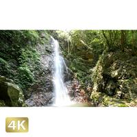 104007 ■ 秋川渓谷 払沢の滝