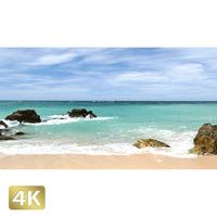 1008010 ■ 沖縄本島 名護の海岸