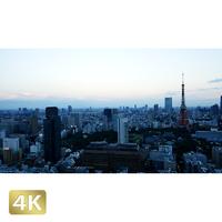 1028003 ■ 東京 東京タワー夕景