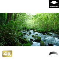 2035075 ■ 奥入瀬渓流 三乱の流れ
