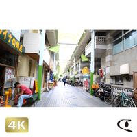 1038006 ■ 石垣島 ユーグレナモール
