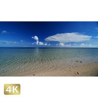 1038096 ■ 石垣島 米原ビーチ