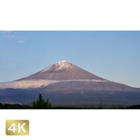 1016019 ■ 富士山 紅葉