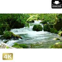 2035030 ■ 奥入瀬渓流 阿修羅の流れ