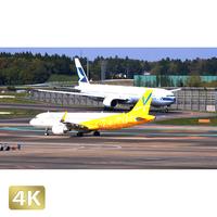 1031052 ■ 成田空港 第2ターミナル TAXING