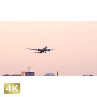 1031022 ■ 成田空港 A南 離陸 ANA
