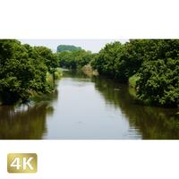 1034004 ■ 渡良瀬遊水池 川