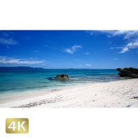 1026017 ■ 黒島 西の浜