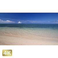 1013033 ■ 沖縄 ウッパマビーチ