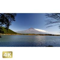 1015024 ■ 富士山 紅葉