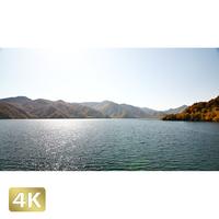 1014002 ■ 日光 紅葉 中禅寺湖