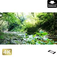 2004022 ■ 秋川渓谷 南秋川