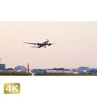 1031018 ■ 成田空港 A南 離陸 ANA