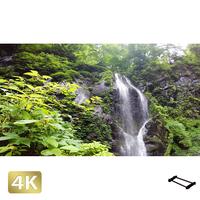 1002033 ■ 日光 荒沢相生滝