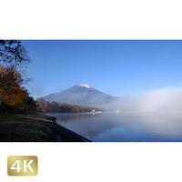 1015026 ■ 富士山 紅葉