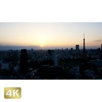 1028002 ■ 東京 東京タワー夕景