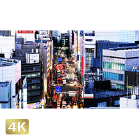 1028008 ■ 東京 明治通り夕景