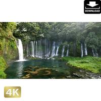 2011013 ■ 静岡県 白糸の滝