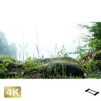 1003010 ■ 丸沼高原 丸沼