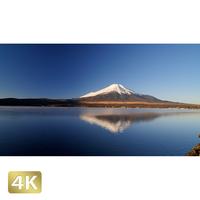 1018062 ■ 富士山 山中湖