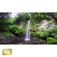 1010026 ■ 静岡 夕日の滝