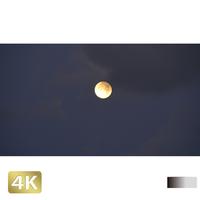 1026001 ■ 黒島 月