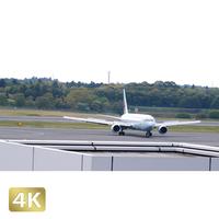 1031099 ■ 成田空港 第1ターミナル TAXING