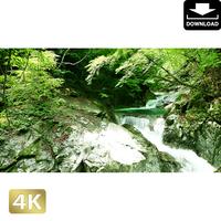 2010005 ■ 西沢渓谷 三重の滝