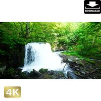 2035100 ■ 奥入瀬渓流 銚子大滝
