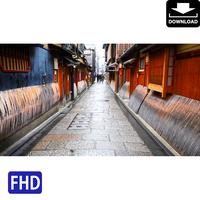 4043073 ■ 京都 紅葉