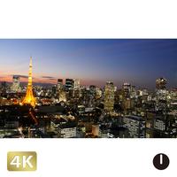 1028075 ■ 東京 東京タワー