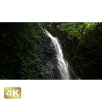 1005001 ■ 秋川渓谷 払沢の滝