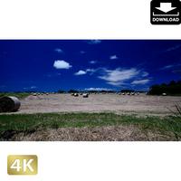 2026029 ■ 黒島 放牧場