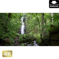2035048 ■ 奥入瀬渓流 雲井の滝