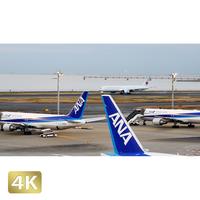 1028050 ■ 東京 羽田空港