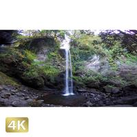 1015039 ■ 静岡 夕日の滝
