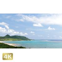 1022015 ■ 石垣島 ハンナ岳