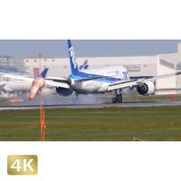 1031126 ■ 成田空港 北 離陸 ANA