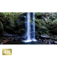 1015037 ■ 神奈川 夕日の滝