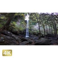1015040 ■ 静岡 夕日の滝
