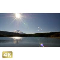 1018007 ■ 富士山 西湖