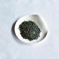 萌木 / 手摘み煎茶(2020年新茶)
